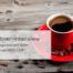 Online Marekting Agentur RED CUP im Interview