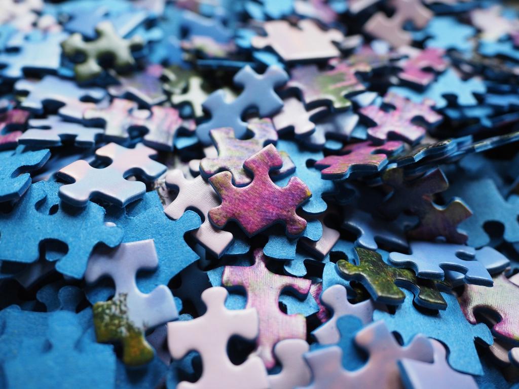 Fragmentierte Systemlandschaft